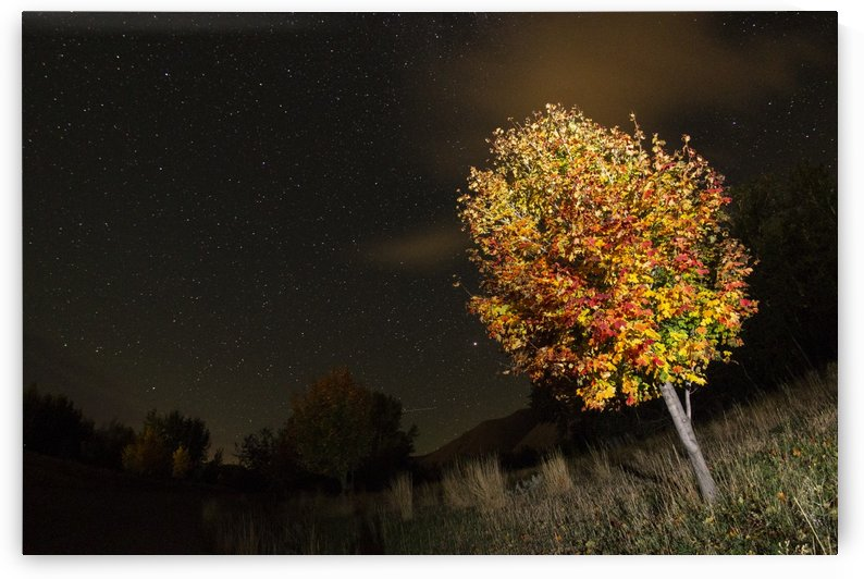 Stars over Fall Colors in October by John Anderson