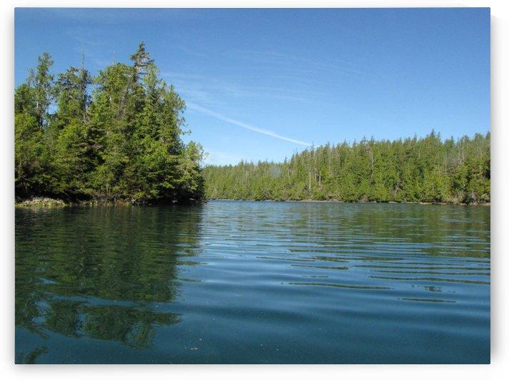 Shoreline Barkley Sound by Dee Vanggo