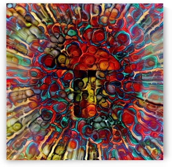 Colorful Mushroom by Bruce Rolff