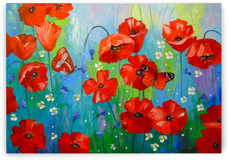 Morning poppies by Olha Darchuk