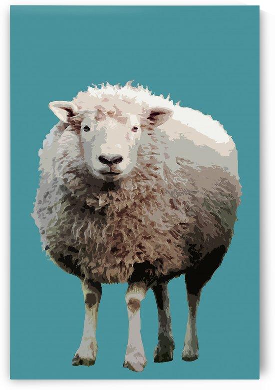 Blue Sheep by Elizabeth Luce Photography