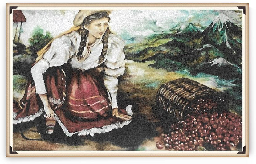Harvesting The Coffee Beans  by  Gloria Nova