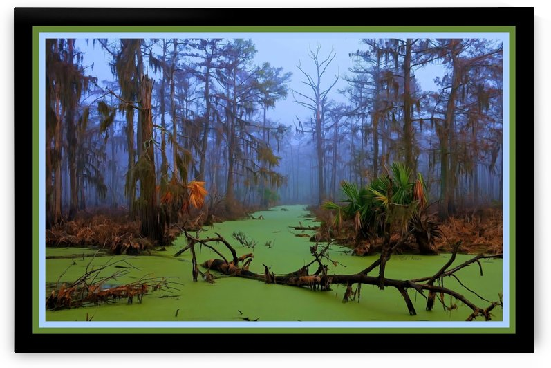 Jurassic Swamp  - HDR - Double Matted and Framed by Digicam