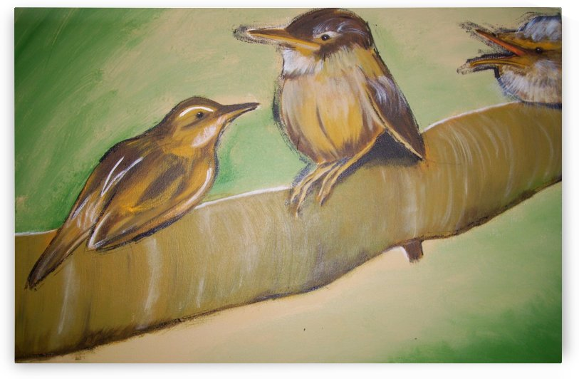 three little birds by Vanessa Cumper