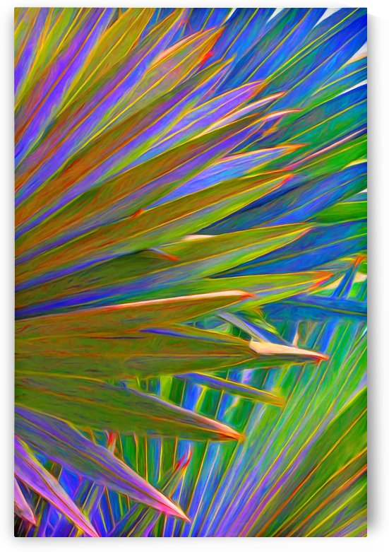 Colorful Palm Frond Abstract by HH Photography of Florida