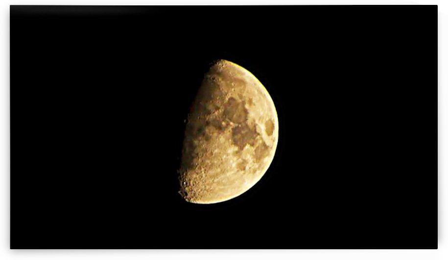 Harvest Moon by Ann Horn