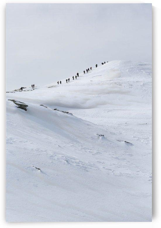 Ascent by Ilir Dugolli