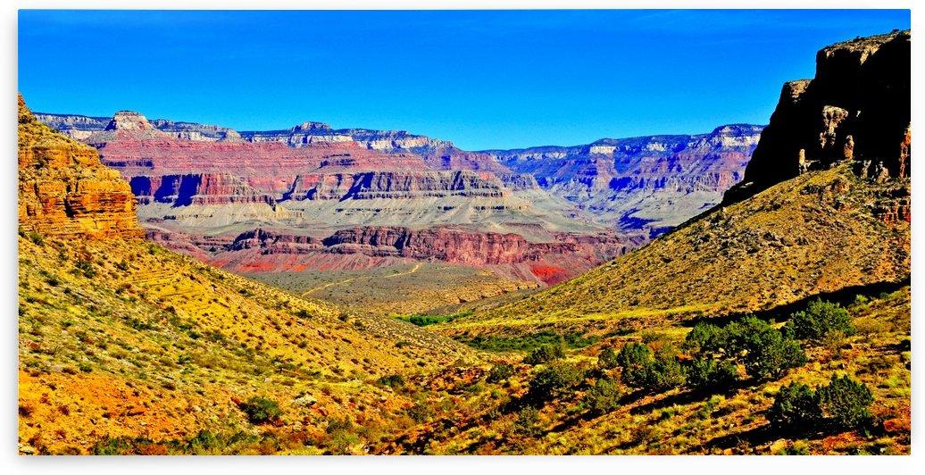 Grand Canyon  Bright Angel Trail 15 by Matthew Lerman