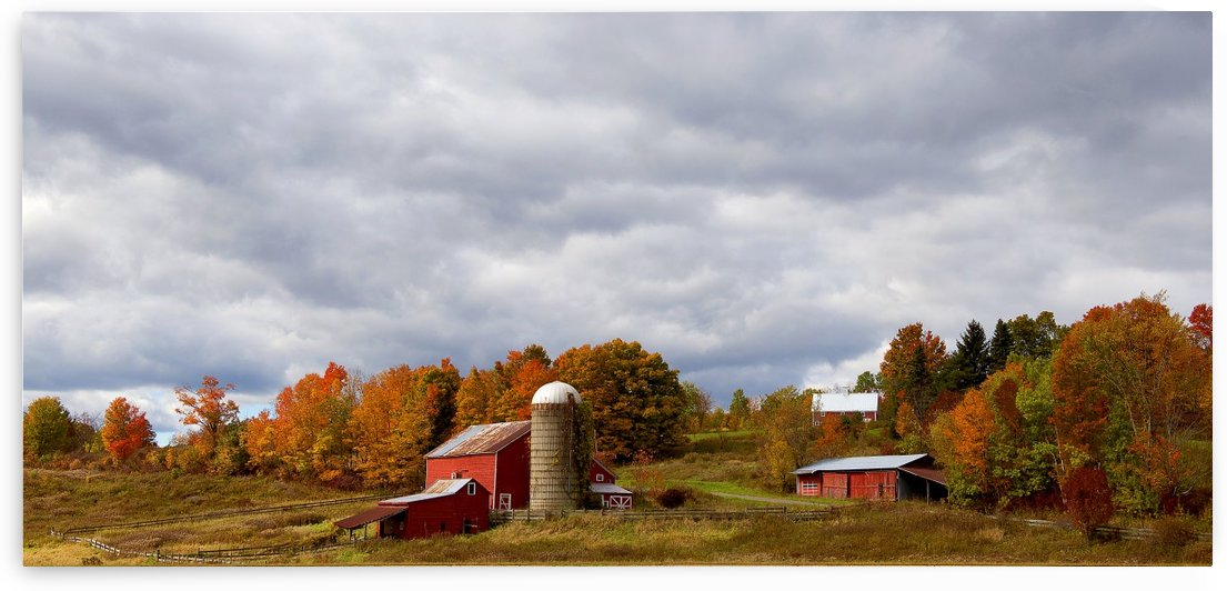 Farm Rigor Hill Rd. New York 796 by Matthew Lerman