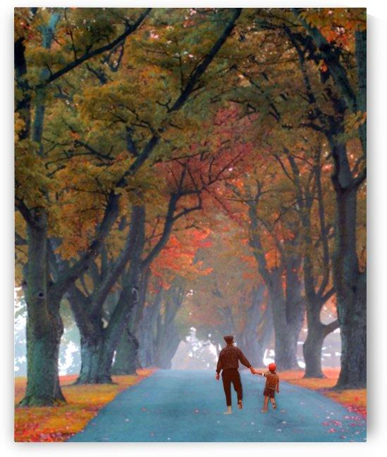 Stately Lane by Eliot Scher