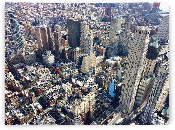 Lower Manhattan by Tony Forcucci