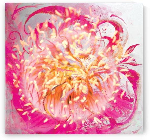 soft energy vortex by BBS Art