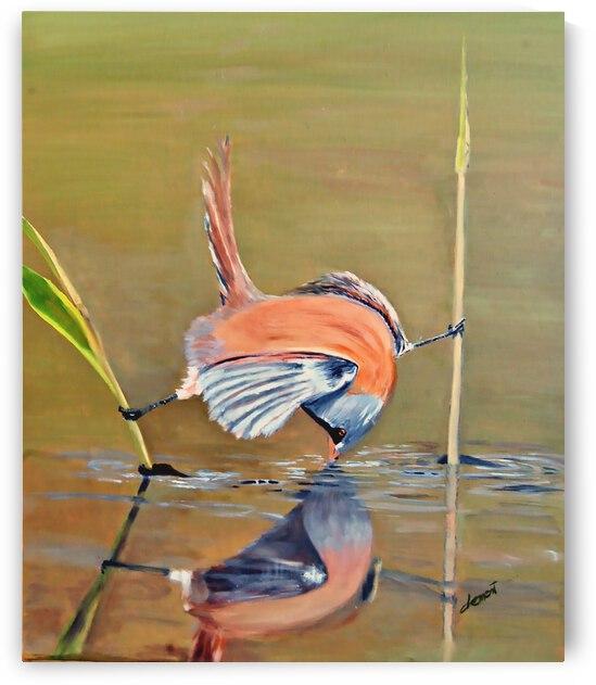 AO016 - Clever Bird by Clement Tsang