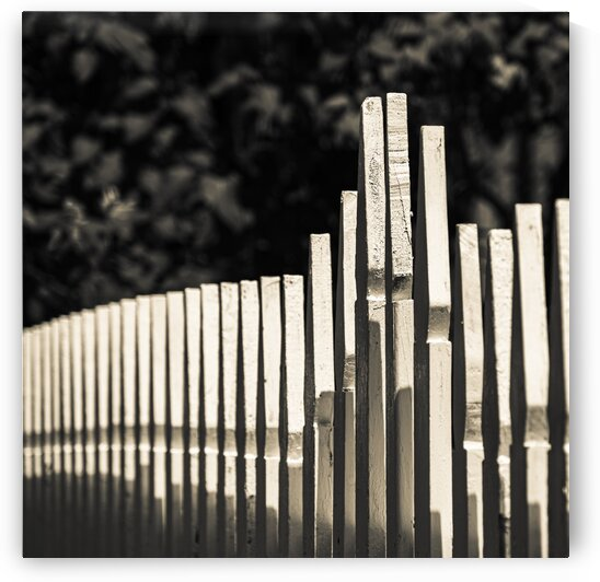 Wiscasset Picket Fence by Dave Therrien