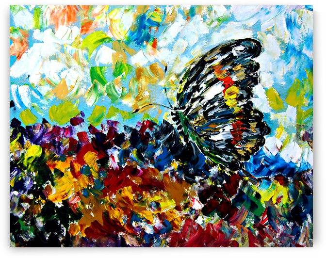 AN05 - Beautiful Butterfly by Clement Tsang