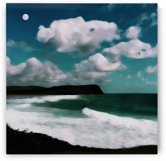 Night Magic by Connie Schofield Art