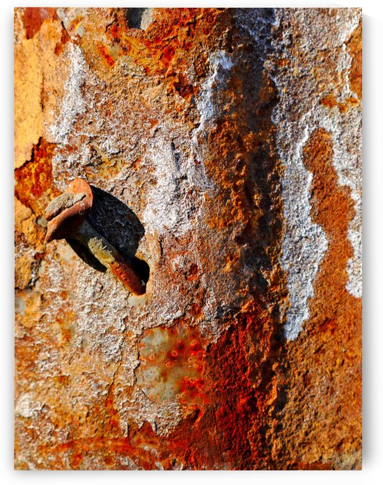 Corrugated Iron Series 4 by Lexa Harpell