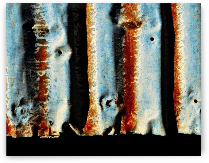 Corrugated Iron Series 2 by Lexa Harpell