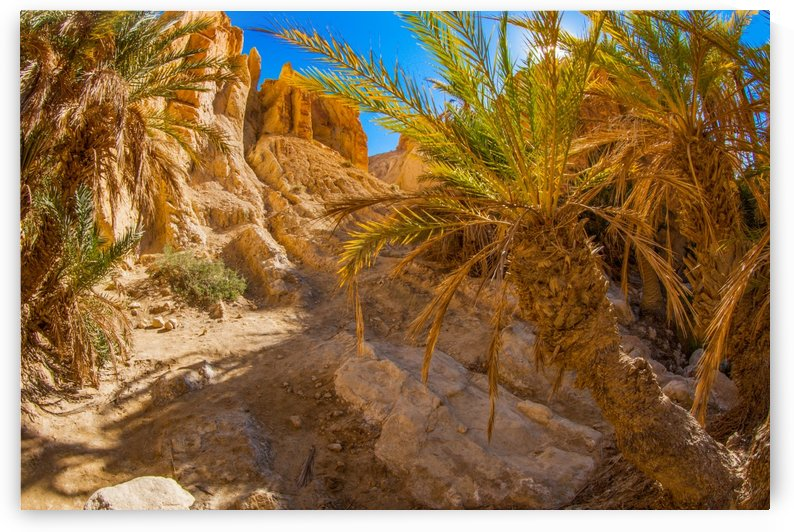 SITE ARCHÉOLOGIQUE DE CARTHAGE TUNISIE by agencetourdumonde com