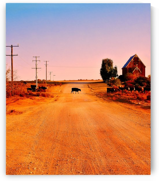 Quirky Sights of the Outback 1 by Lexa Harpell