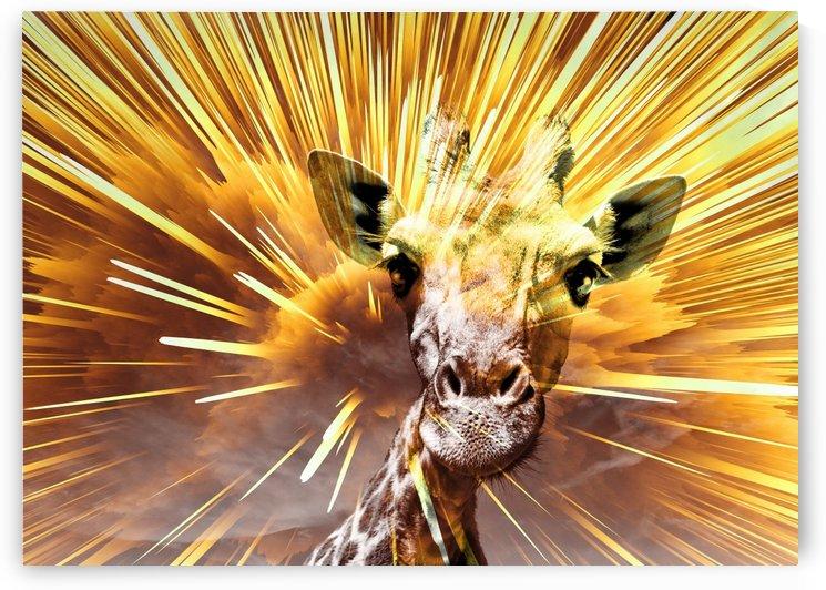 Giraffe pop 7  by Thula-Photography