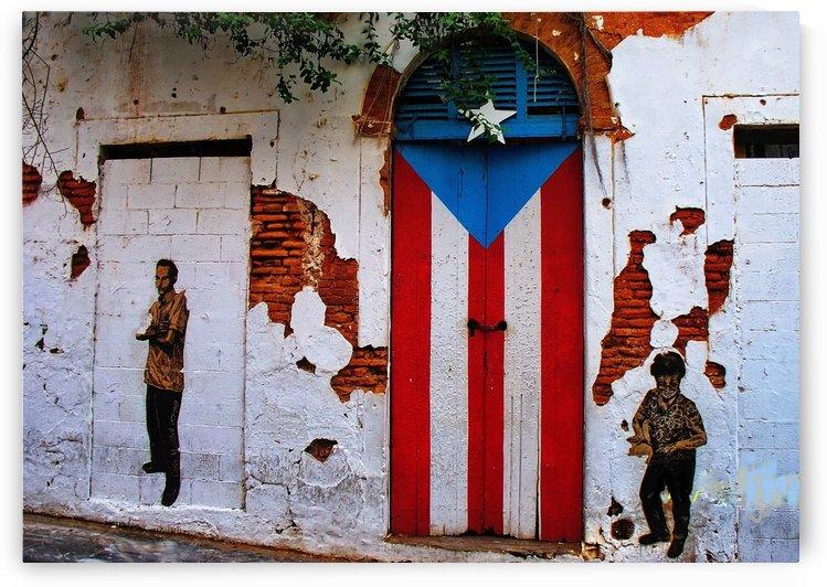 Flag Door by Efrain Montanez