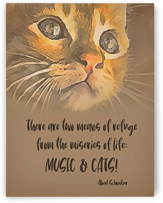 A Refuge - Music And Cats by HH Photography of Florida