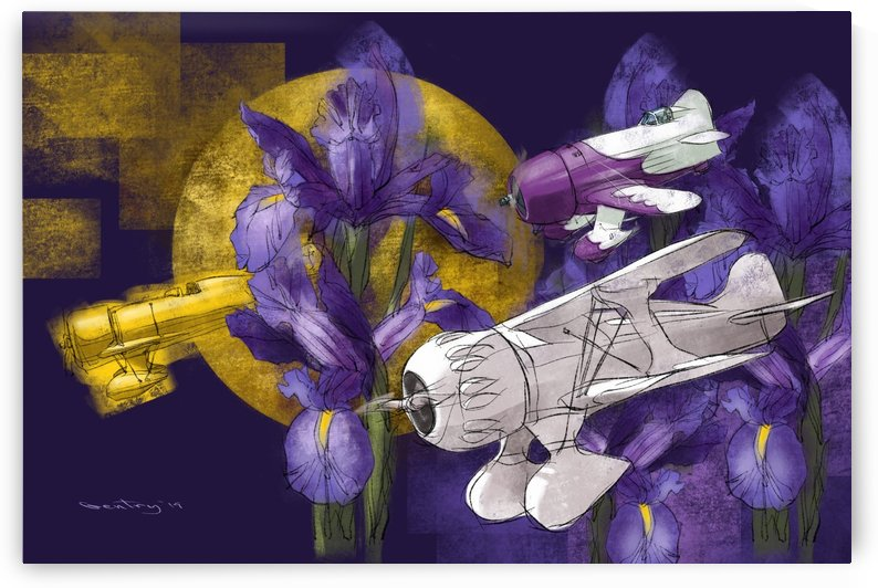 Iris & Air Racers by GentryArts