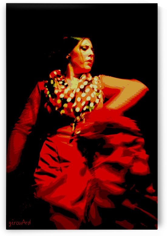 Flamenco 3   by girouArd