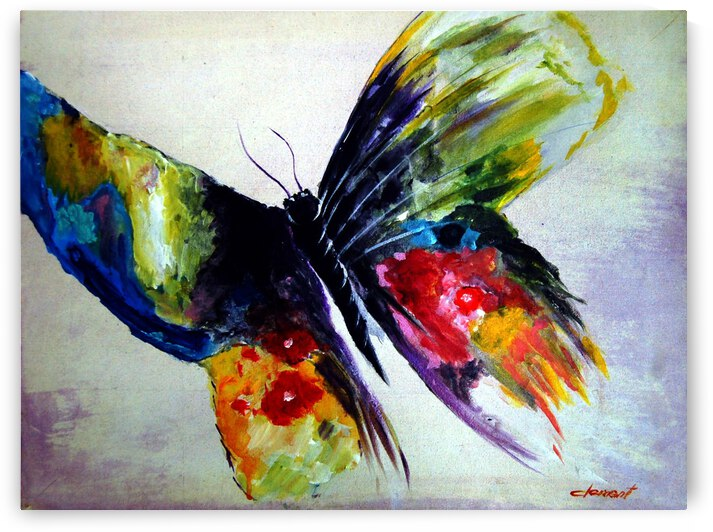 AN08 - The Butterfly by Clement Tsang
