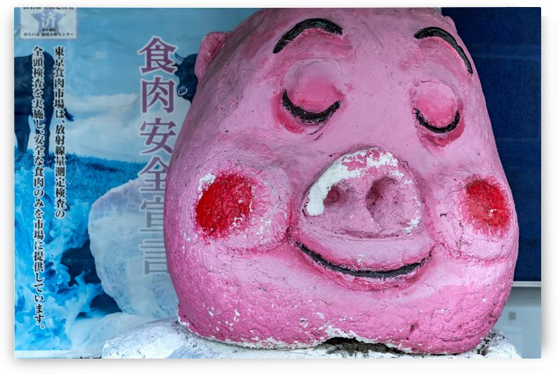 Gourmet pig by Papdi Zoltan Silvester