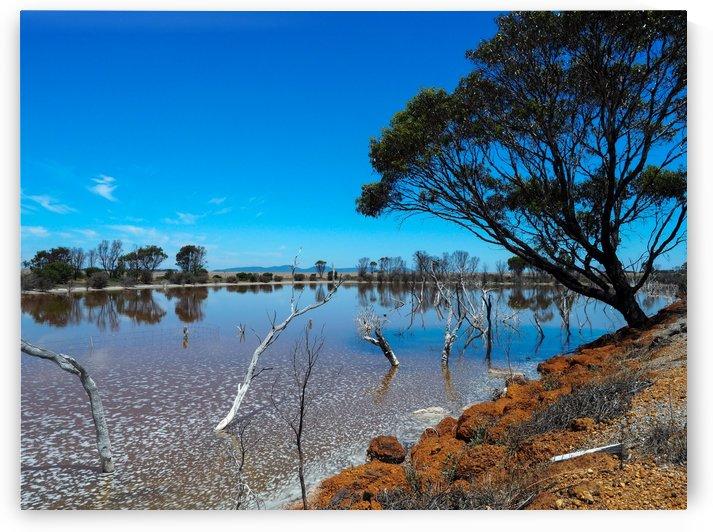 Australian drought by Skyeleaf