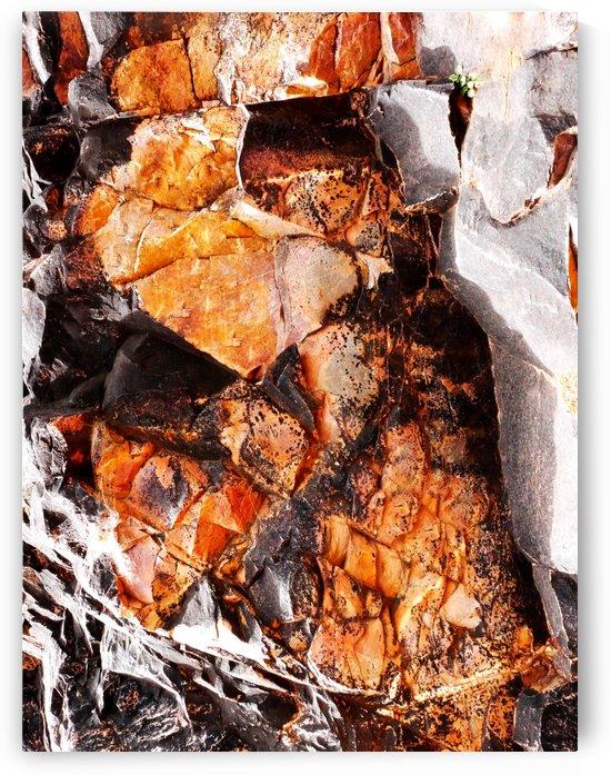 Australia Rocks - Abstract 20 by Lexa Harpell