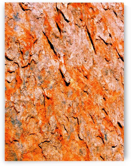 Australia Rocks - Abstract 26 by Lexa Harpell