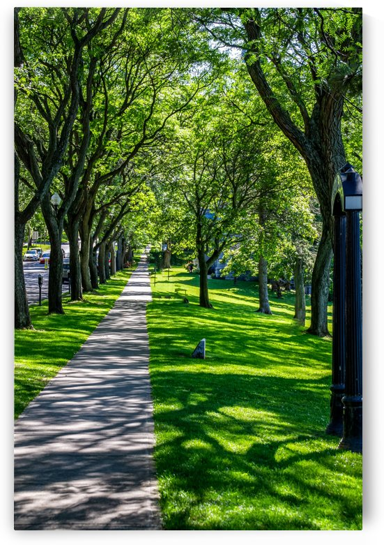 Skaneateles 11 by William Norton Photography