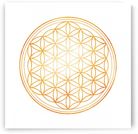Sacral Orange Watercolor Flower of Life by Leah McPhail