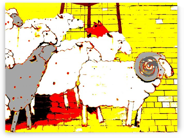 Cattle Dog and Sheep - Yellow by Lexa Harpell