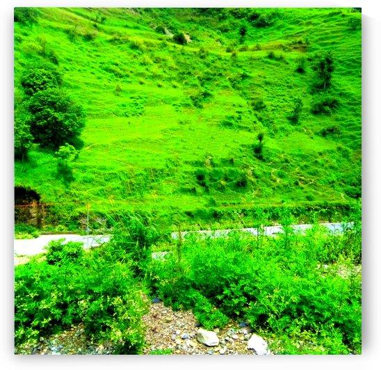 Hill view by Manoj sati