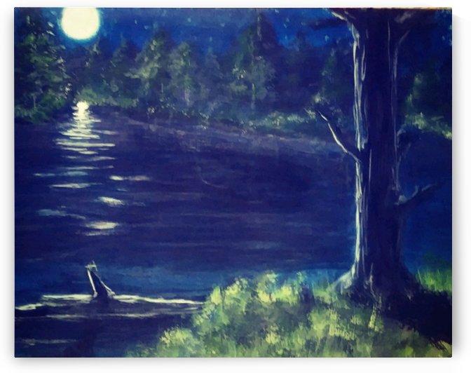 Peaceful Moonlit night by Beholders Eyes