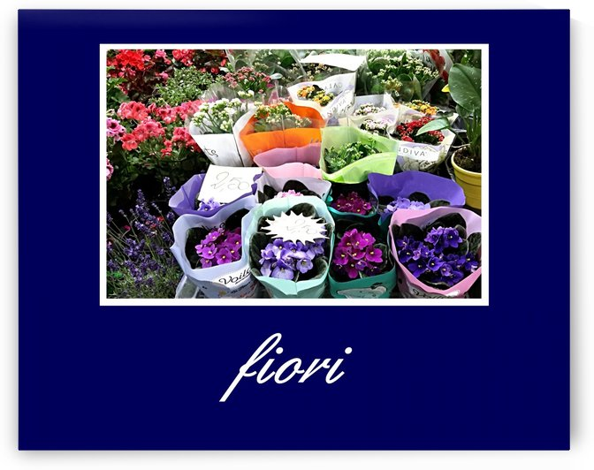 Poster Fiori by Shadow and Form