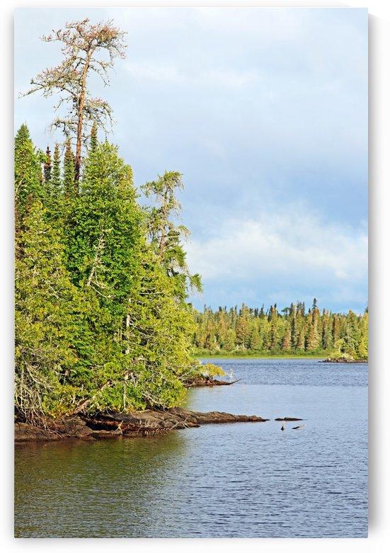 Bonar Lake I by Deb Oppermann