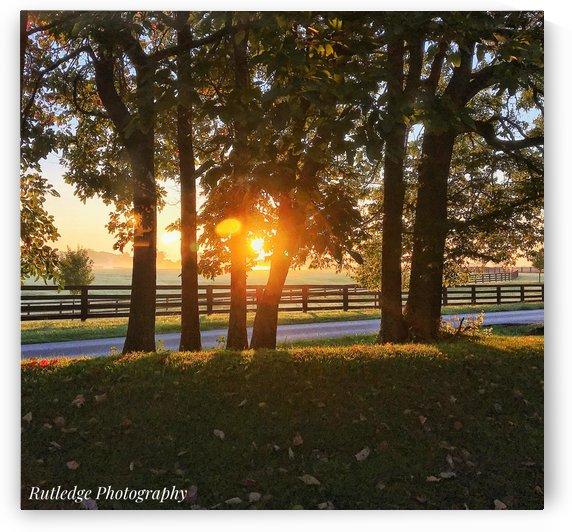 Filtered Sunrise by Joshua Rutledge