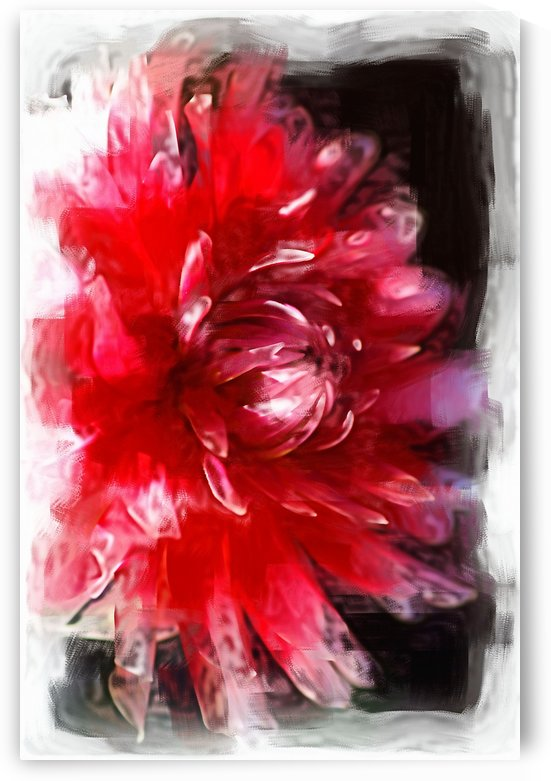 Dahlias Red Dance  by Joy Watson
