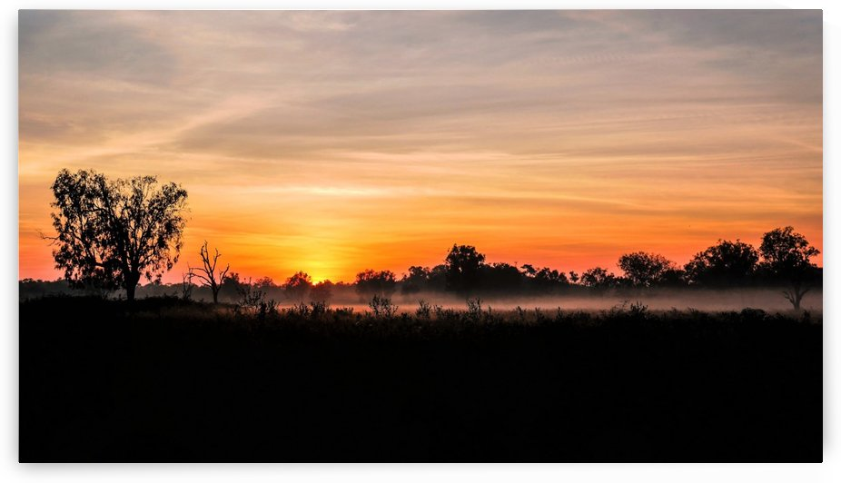 Winter Sunrise in the Outback by Lexa Harpell