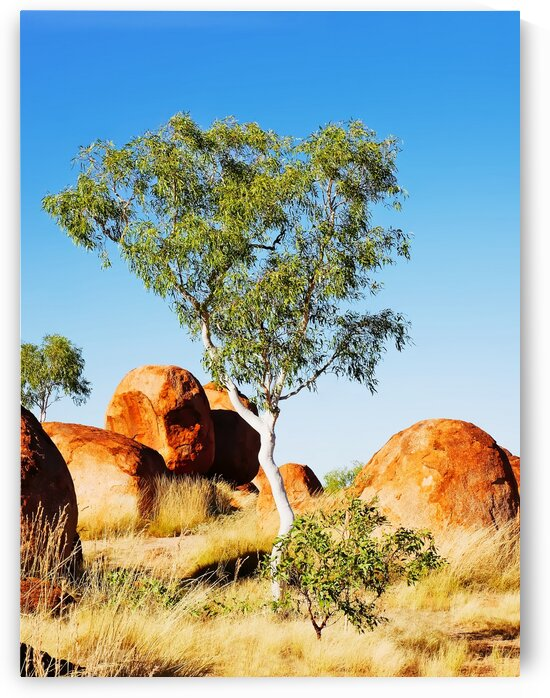 Landscape - Devils Marbles by Lexa Harpell