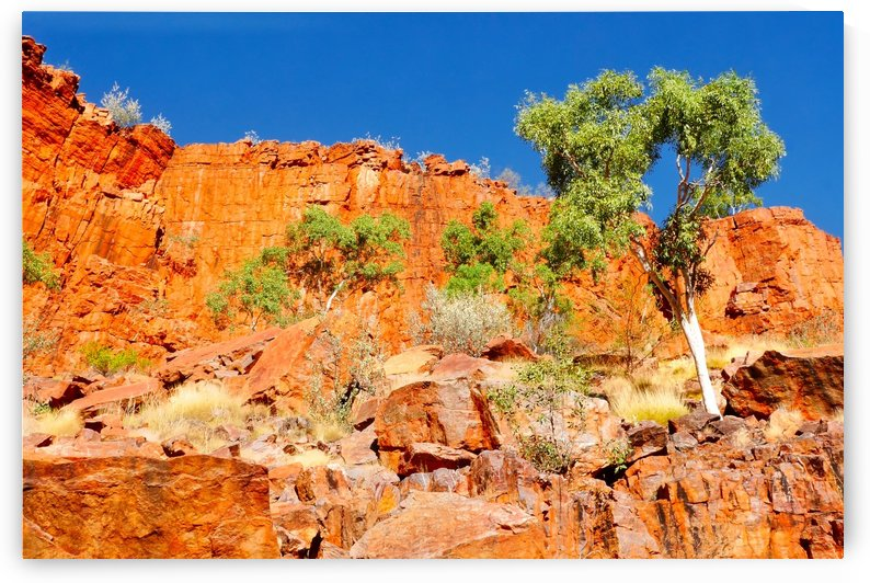 Ormiston Gorge Landscape by Lexa Harpell
