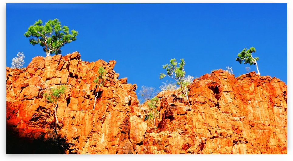 Skyline - Ormiston Gorge by Lexa Harpell