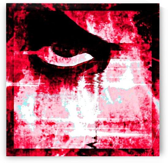 Modern Pink Eye by Rabid Solutions