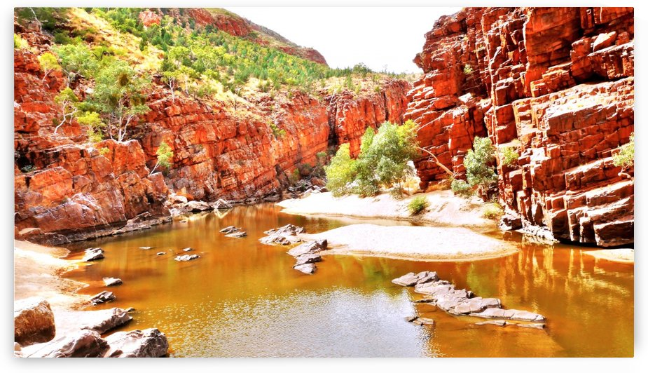 Waterhole - Ormiston Gorge by Lexa Harpell
