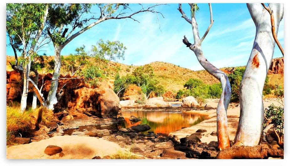 Ghost Gum - Central Australia by Lexa Harpell